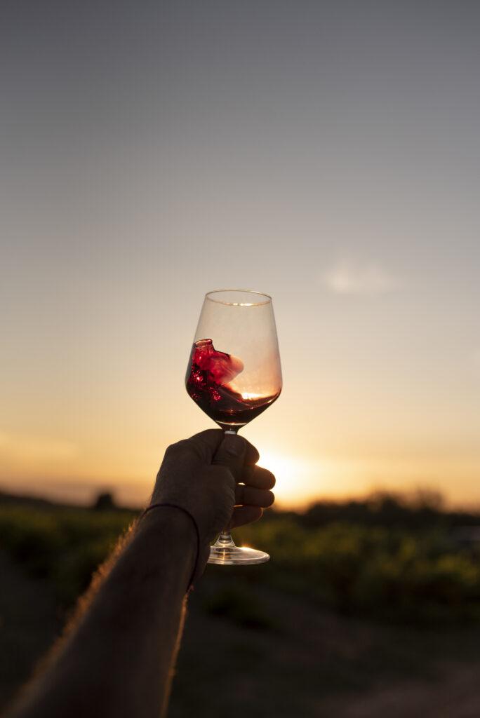 Imatge d'una copa de vi negre alçada amb les vinyes i la posta de sol de fons.